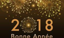 bonne-annee-076.jpg